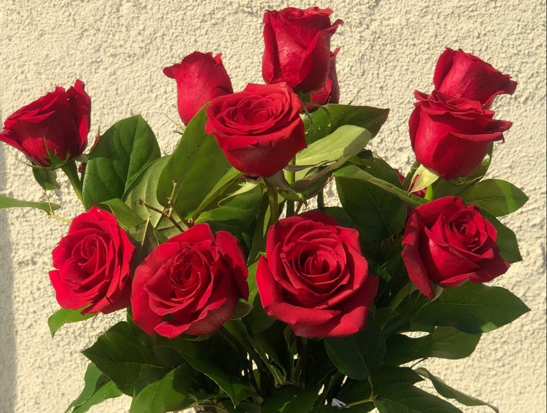 Roses: The most identified symbol of Love.