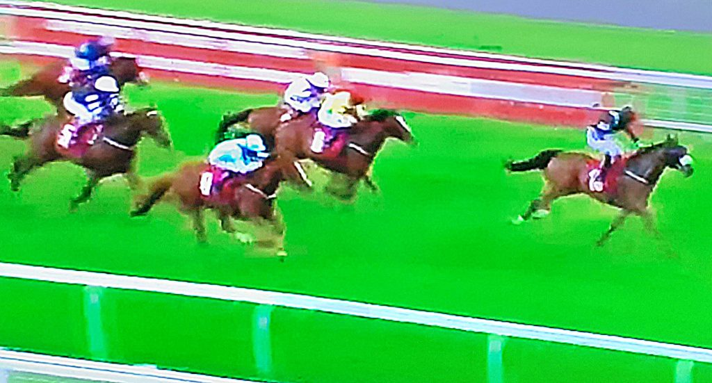 Star Shield (blue silks) ran on to finish second behind Gallipoli at Redcar.