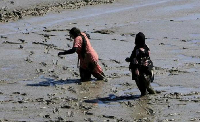 Mud, mud, glorious mud! Beachgoers stuck in mud flats.