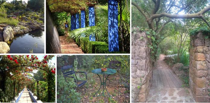 Forest Bath in the Albarda Garden