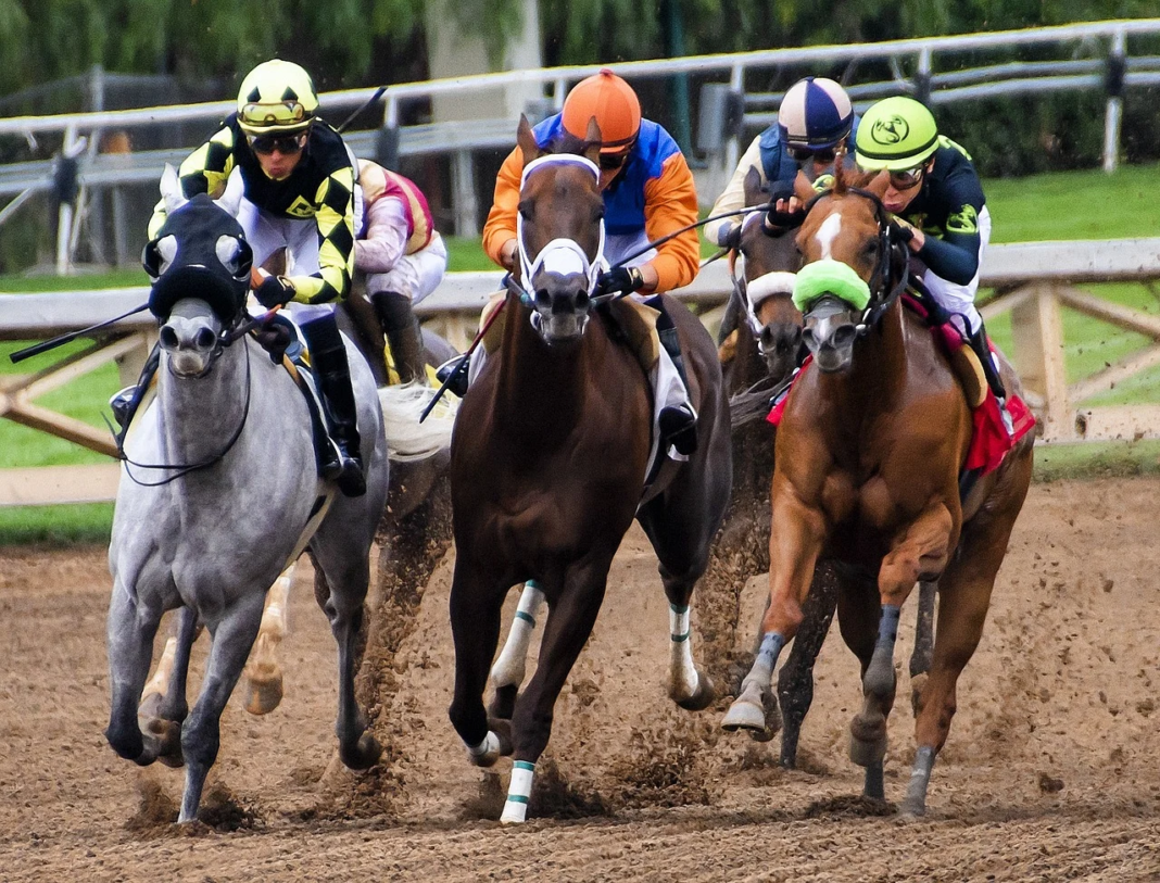 A Closer Look at the Kentucky Derby 2020: Top Contenders and Current Odds
