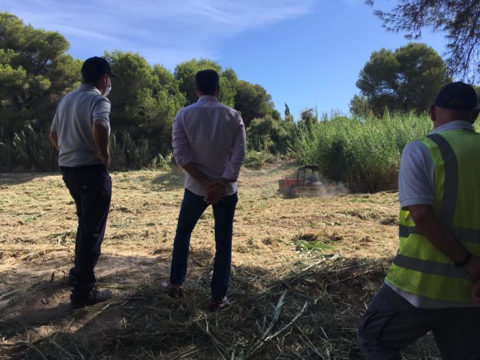 CHS undertake cleaning Orihuela Costa ramblas and riverbeds