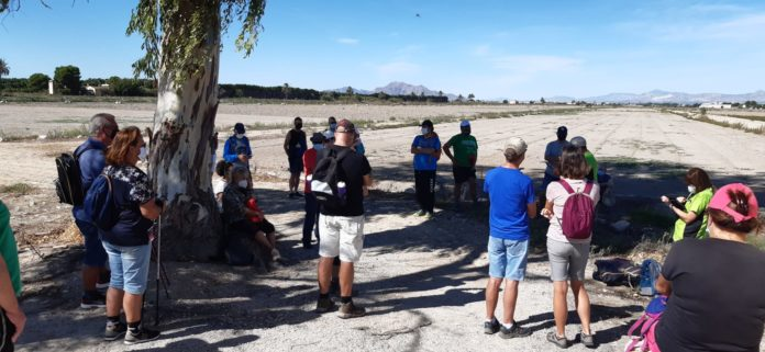 More than thirty people take part in the third ecotourism route organised in San Fulgencio