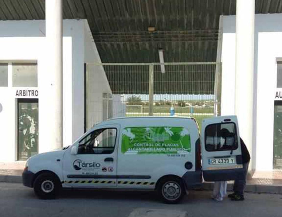 Covid-19 detected at San Fulgencio sports centre