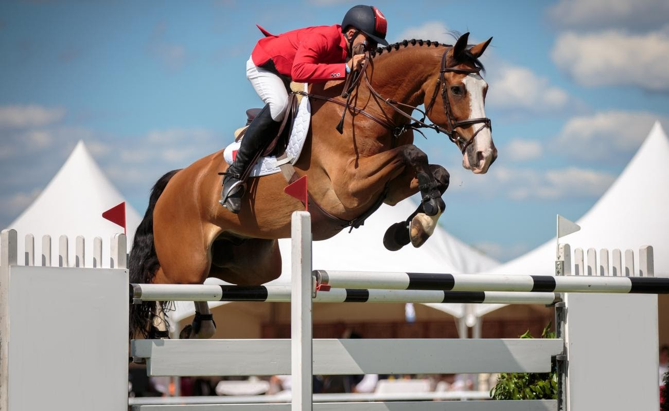 Man on horse jumping over steeplechase obstacle
