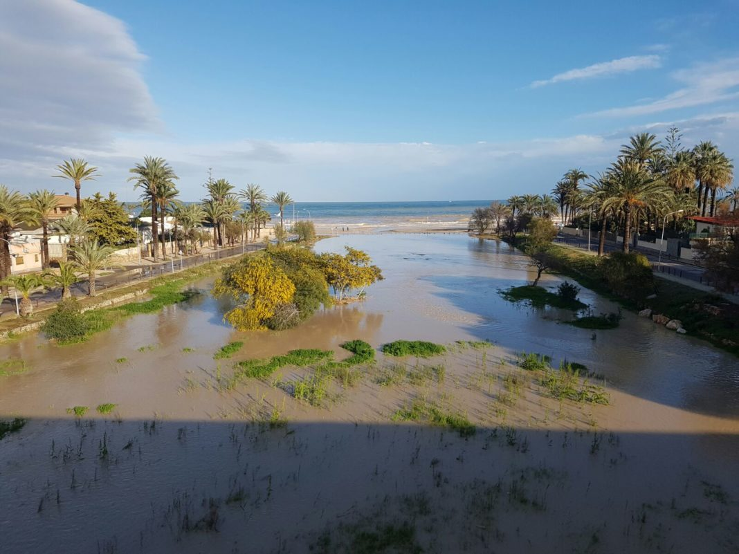 Ecologists propose to recover the lagoon of Campoamor beach in Orihuela Costa