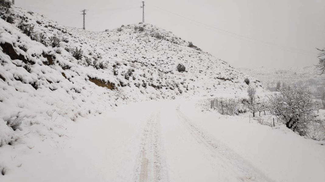 The first snow storms of the year leave 15 centimetres in the province