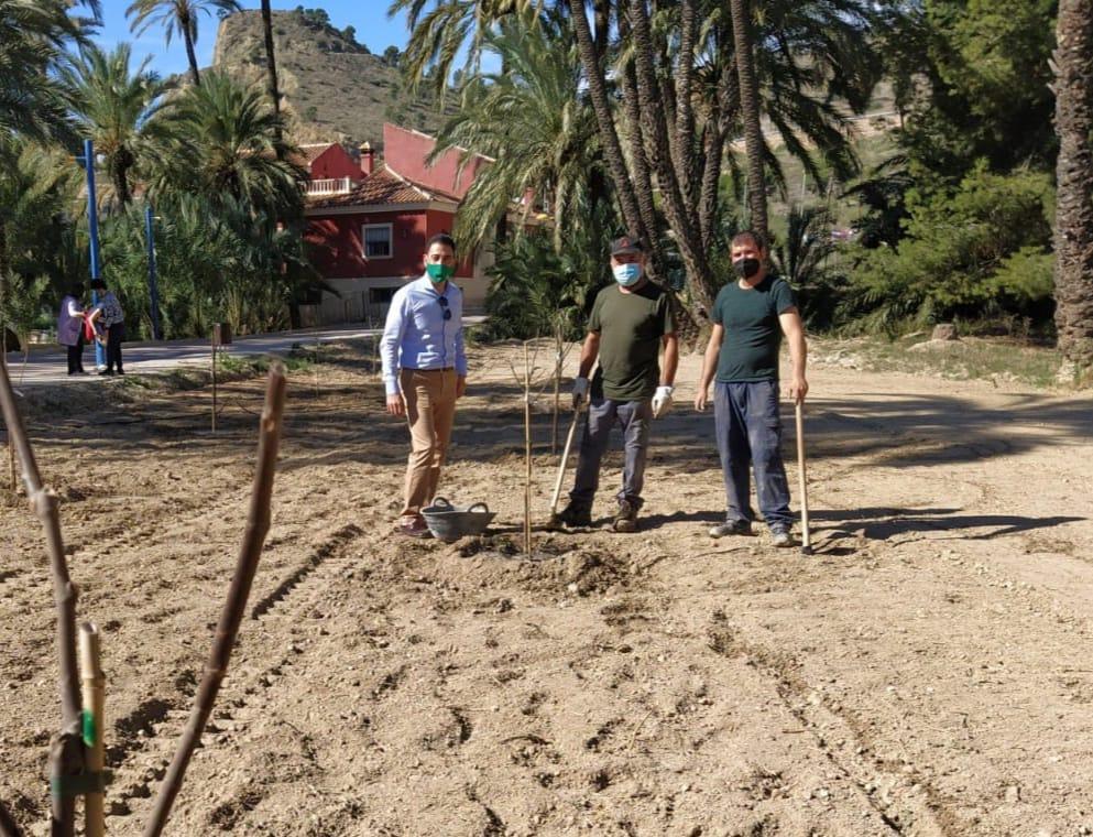 Environmental boost for El Palmeral