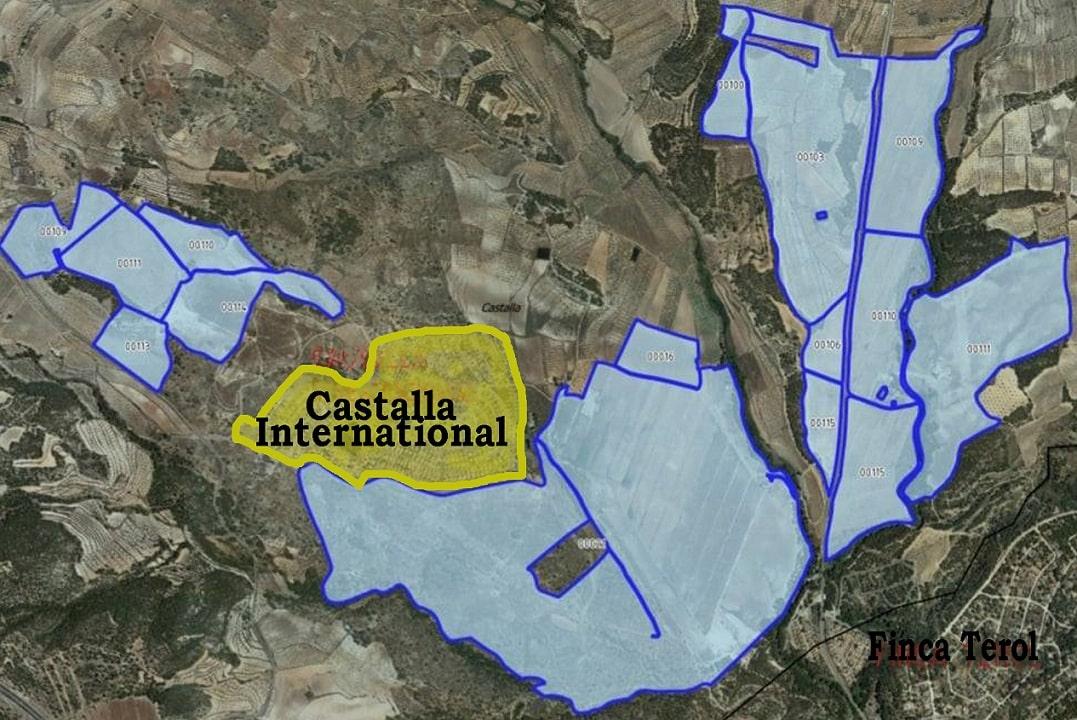 Solar Panel Farm set to devastate Castalla International