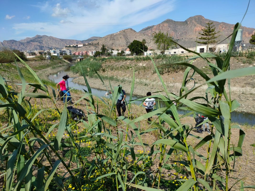 Volunteers clean up the Segura to mark