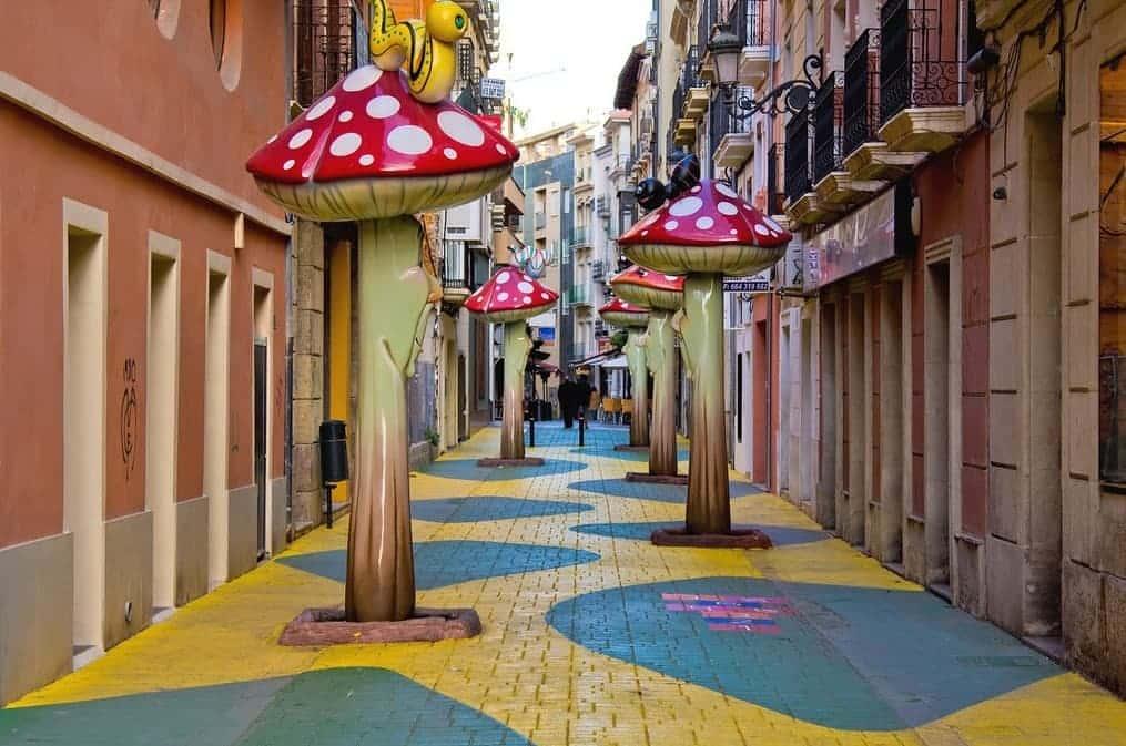 Alicante's 'mushroom street' goes viral