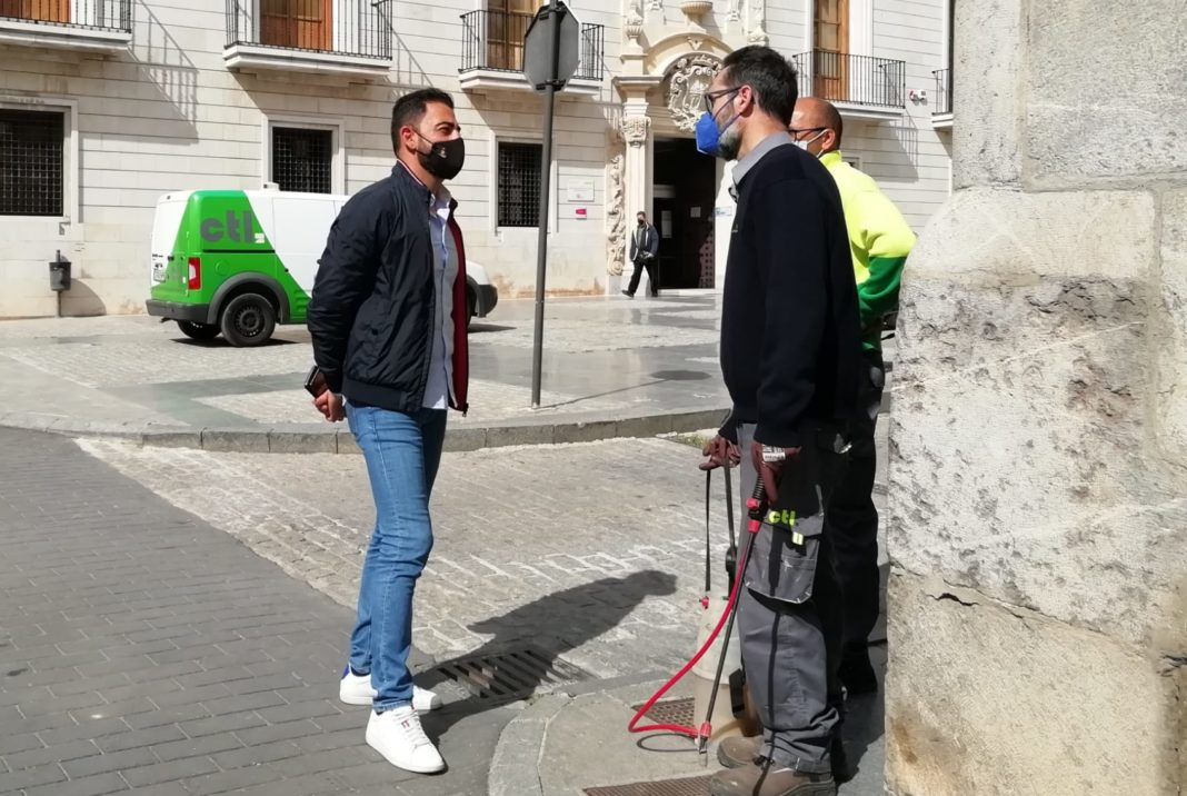Mosquito invasion to be finally tackled by Orihuela Council