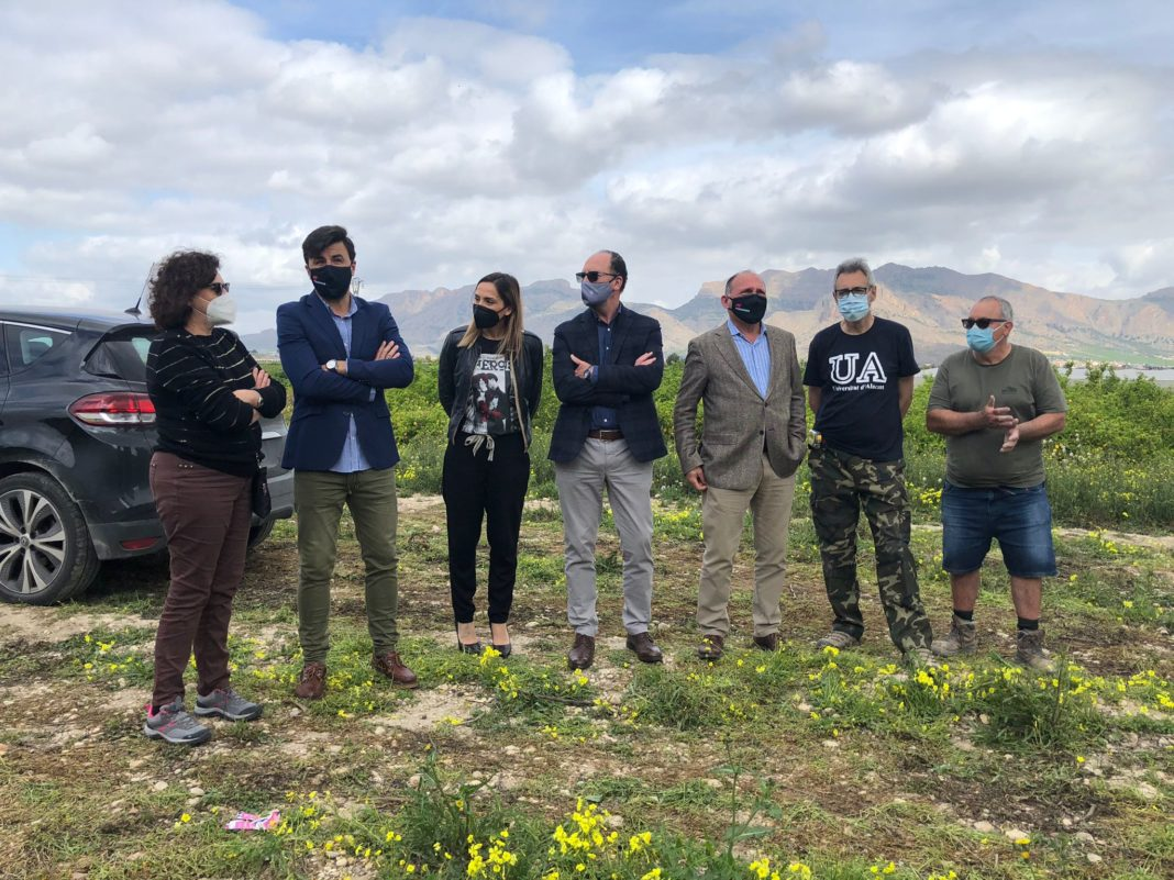Excavations begin at the Los Saladares site