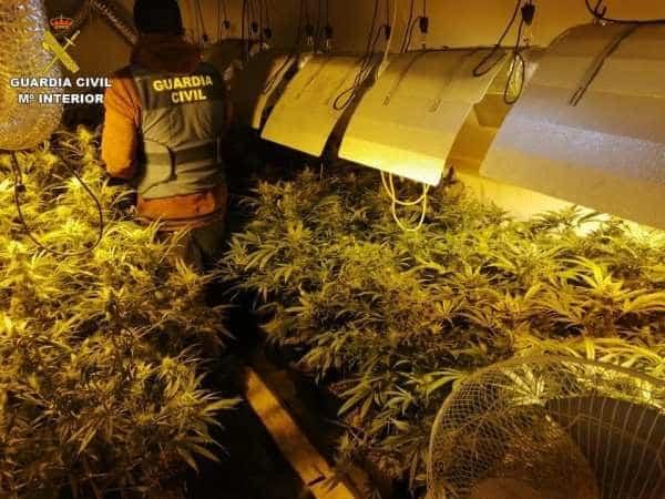 Local Torrevieja Police Officer Amongst Drug Gang Arrests