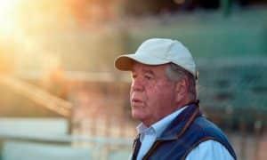 Sir Michael Stoute saddles Degree (6.15) at Lingfield Park.