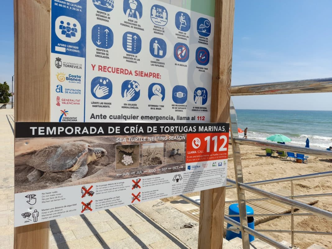 Annual campaign to protect nesting of sea turtles on beaches