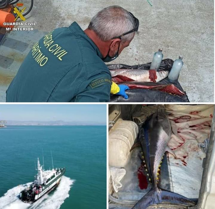 Guardia Civil clamp down on Illegal Fishing by unregistered boats