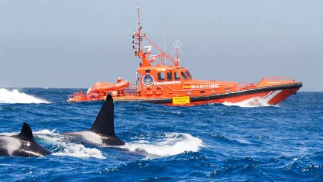 25 cases required the services of Spain's Maritime Rescue to tow vessels into port