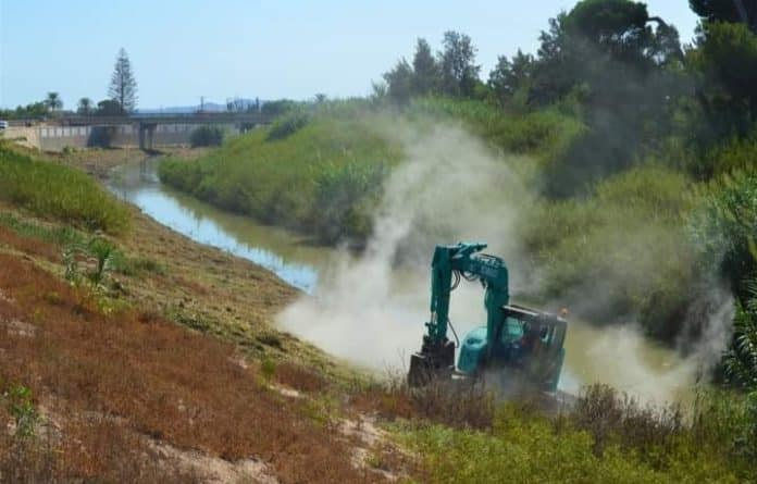 Reed beds removed from the Río Segura by Almoradi